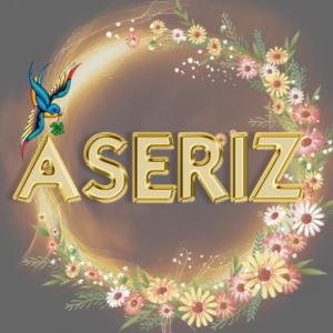 Aseriz New 500-500